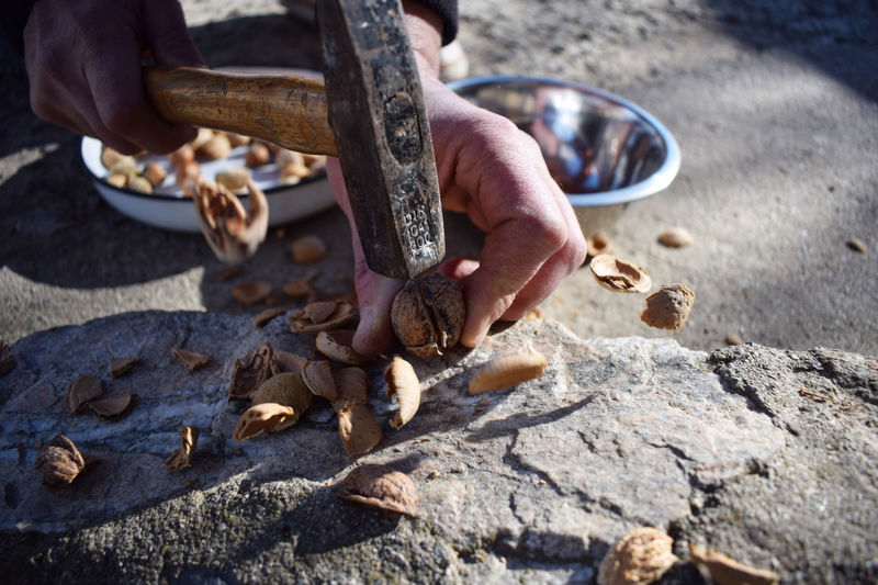 Cropped hands of person breaking walnuts on rock