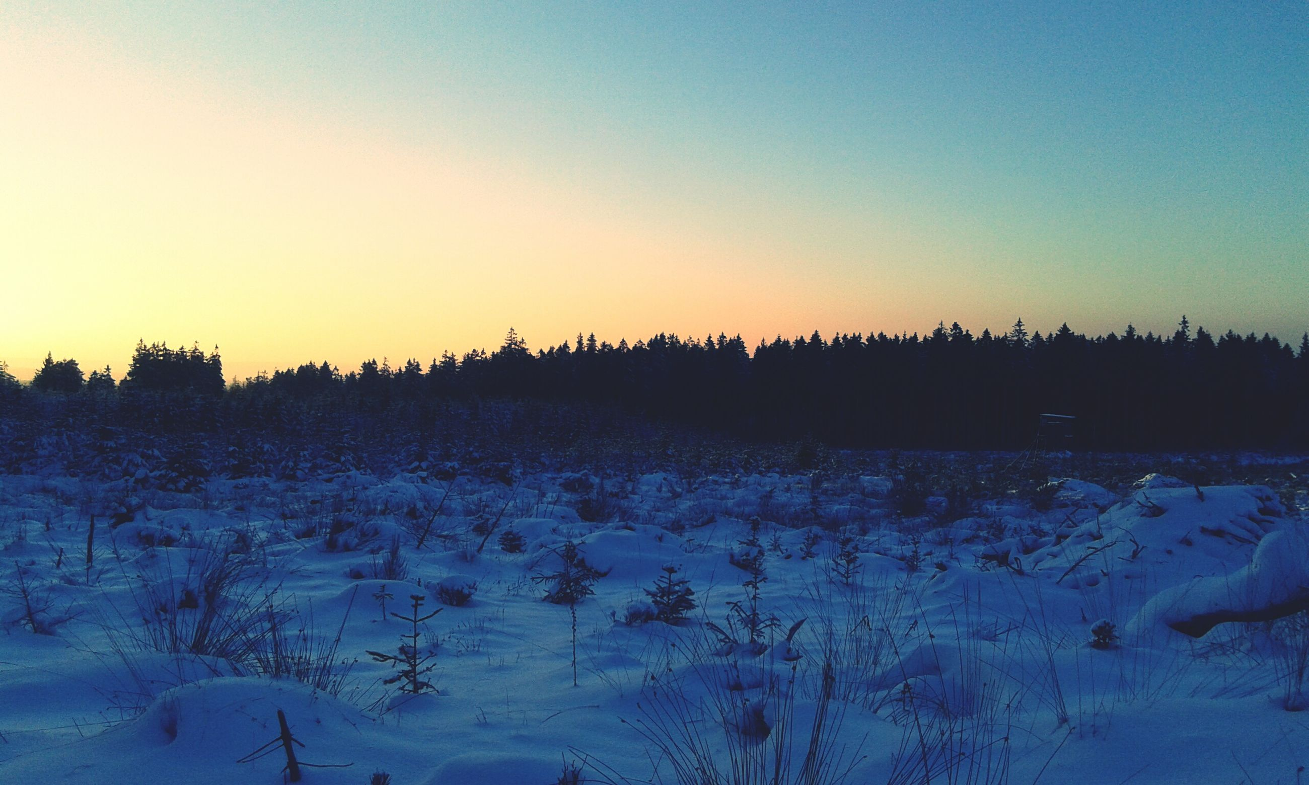 winter, snow, cold temperature, clear sky, tranquil scene, copy space, landscape, tranquility, scenics, season, beauty in nature, nature, sunset, field, weather, frozen, non-urban scene, covering, dusk, sky