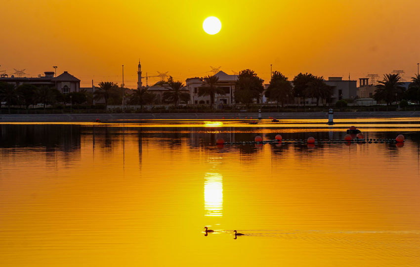 No People Park Lake Sunrise Outdoors Dubai❤ @u27364141