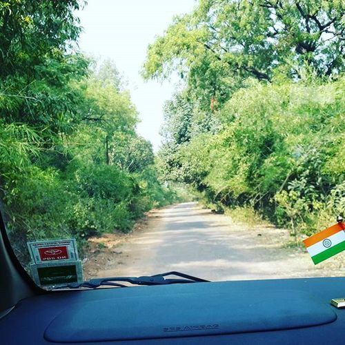 Jungleee road trip Roadtrip Grass Greenery_scenery Srsairbag Likes Toyotainova