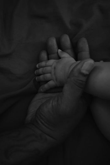 Father holding baby sons hand