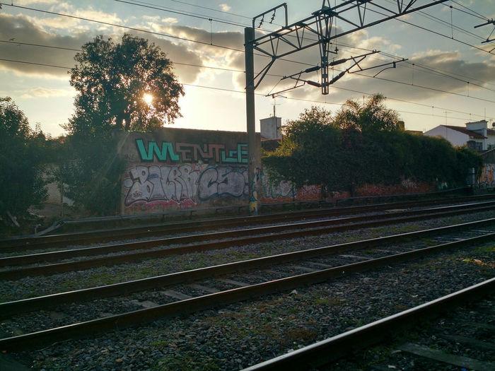 Sun Sunset Train Showcase July