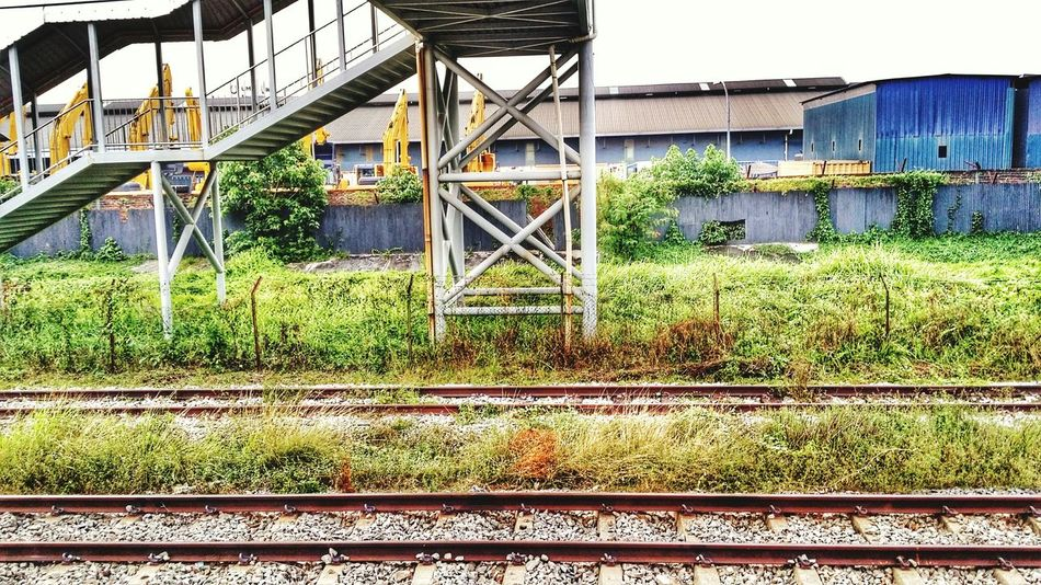 Train Station Sunset Scenery Green Green Green!  Loneliness