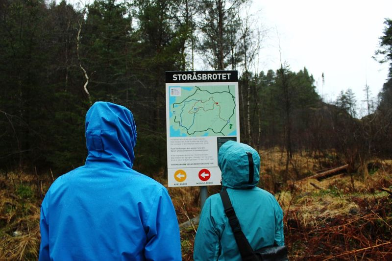 Rear view of man and woman standing by information sign in forest