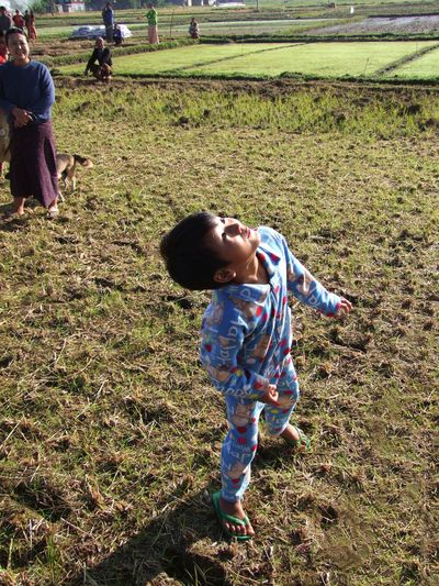 Boy looking up at balloon as it landed in a rice paddy field Air Balloon Balloon In The Air Child Composition Full Frame Fun Inle Lake Looking Up Morning Sunrise Myanmar New Experience Outdoor Photography Paddy Field Rice Field Shan State Shan State Sunlight And Shadow Sunrise Tourism Tourist Attraction  Tourist Destination