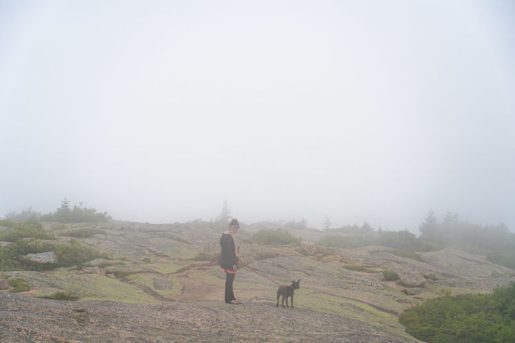 walking the dogs at the top of the mountain covered in clouds Alone Beauty In Nature Day Dog Domestic Domestic Animals Field Fog Land Landscape Mammal Men Nature One Animal One Person Outdoors Pets Real People Sky Vertebrate Walking