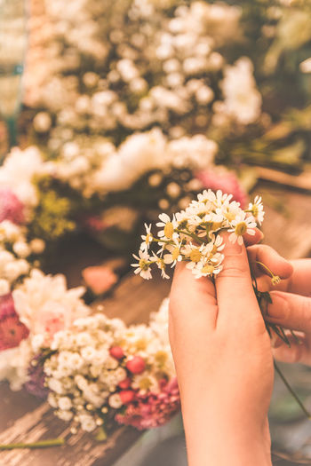 Flower Wreath Human Hand Hand Human Body Part Flower Flowering Plant One Person Holding Real People Plant Focus On Foreground Lifestyles Freshness Women Nature Fragility Vulnerability  Beauty In Nature Day Body Part Finger Flower Head Outdoors Human Limb Cherry Blossom
