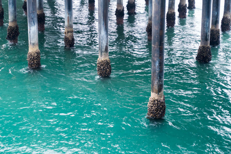 Wooden Post In Sea