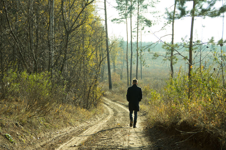 Alone Man Alone On The Road Autumn Coats Desert Forest Man Progress On The Road