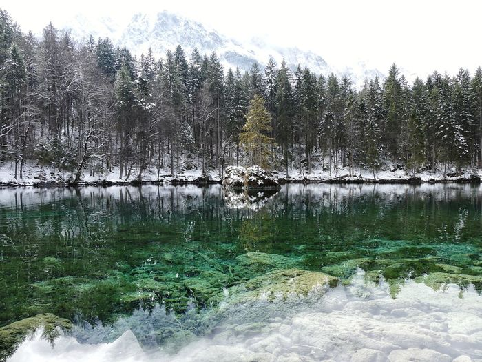 Bavarian Landscape Bavaria Badersee Nature Betterlandscapes Reflection Reflections In The Water Alps Wood Outdoors Scenics - Nature Cloud Lake View Tree Water Sky Close-up Snowcapped Snow Covered Snowcapped Mountain Scenics Tranquility Idyllic Tranquil Scene Foggy Calm Lakeside Lake Countryside Non-urban Scene