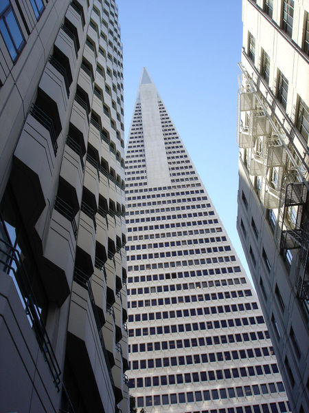TransAmericaBuilding Transamerica Pyramid Architecture_collection San Francisco Cityscape No Edit/no Filter The Purist (no Edit, No Filter) Cityscapes Seeing The Sights