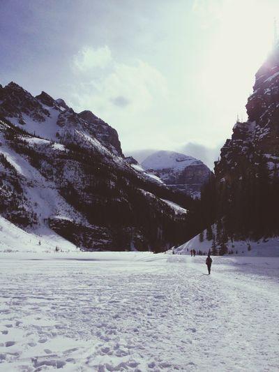 Wander Snow