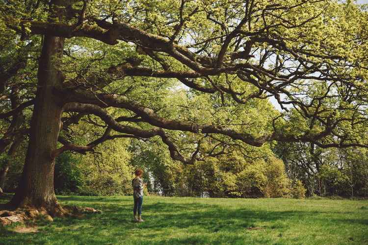Full length of woman standing by trees at park