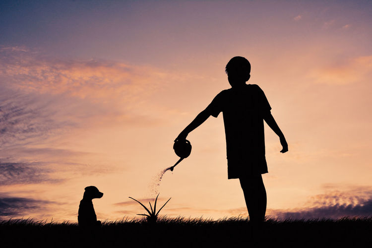 Silhouette of boy watering plant against sky during sunset