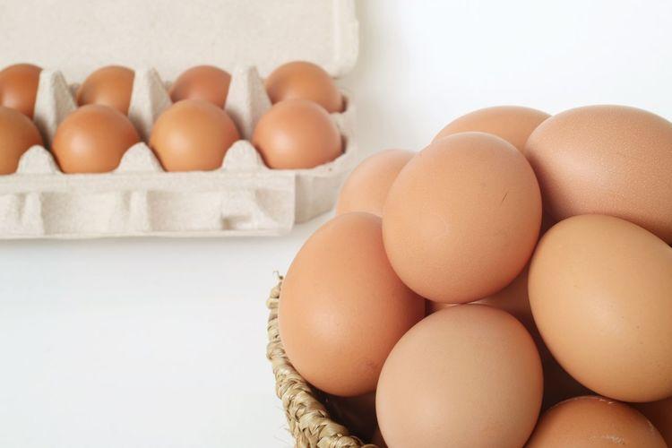 Eggs Shell Tray