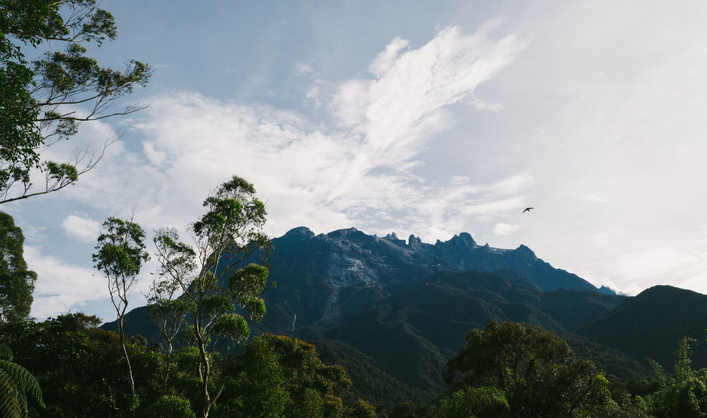 Mount Kinabalu Beauty In Nature Cloud - Sky Day Forest Freshness Landscape Mountain Nature No People Outdoors Scenics Sky Tranquil Scene Tranquility Tree