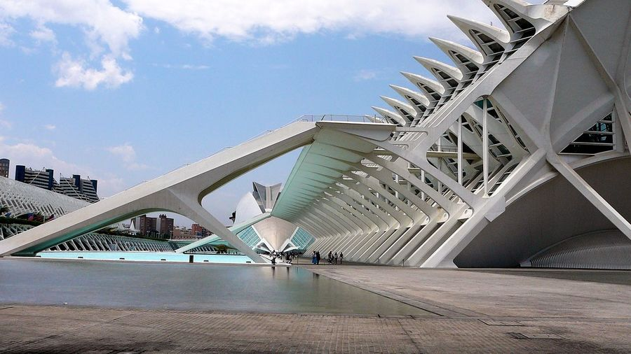 Nothing But The Bare Bones ~ Architecture Arts Culture And Entertainment Bridge - Man Made Structure Building Exterior Built Structure City Concrete Jungle Day Educational Building Modern Outdoors Sky The Architect - 2017 EyeEm Awards Travel Destinations Water City Of Arts And Sciences Of Valencia, Spain