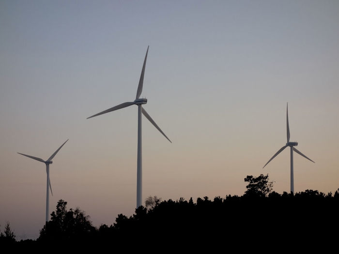 Wind turbines in evening mood Electricity  Renewable Energy Renewable Energy Wind Turbine Sustainable Resources Ecology Sunset Silhouette Forest Evening Calm Tranquility Wind Turbine Wind Power Tree Technology Alternative Energy Fuel And Power Generation Power In Nature Power Station Turbine Silhouette Industrial Equipment Tranquil Scene Idyllic Non-urban Scene Scenics Remote Countryside