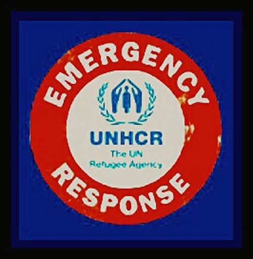 United Nations Sign Signs Signporn Unhcr *UNHCR* Refugee Agency Charity Emergency Response Emergency
