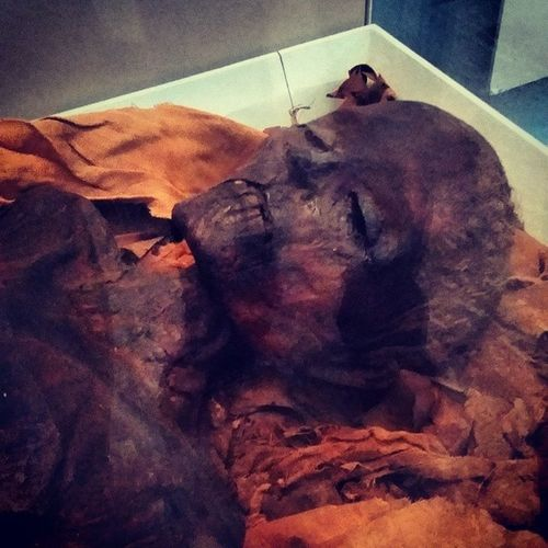 Found a Mummy, cant for the life of me remember his/hers name ?? Britishmuseum Mummy Mummification Crispyfresh