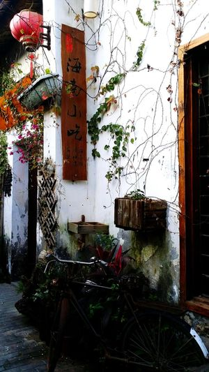 China Photos Shenzhen  Chinese Culture No People Outdoors China View Chinese Style Chinese Old Buildings Historic Historical Building Rural Scene Old Town Storefront