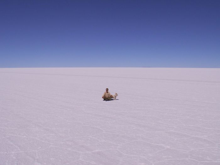 Mid Distance View Of Man With Dog Sitting At Salar De Uyuni Against Clear Sky