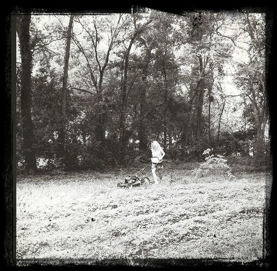 Mowing The Grass James Island Gardening Backyard Chickens