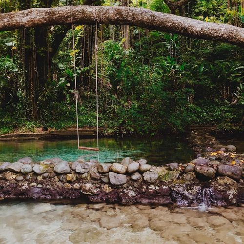 Nature Travel Blue Bluelagoon Carribean Flowing Water Foundtain Jamaica Outdoors Rock