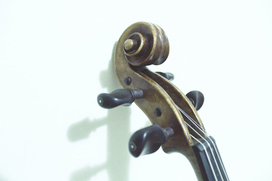Violin details Classical Music Curl Music String The Week On EyeEm Wood Classical Music Close-up Day Detail Indoors  Instrument Music Musical Instrument Musician No People Studio Shot Violin Violin Curl Violin Strings Violinist White Background Wood - Material