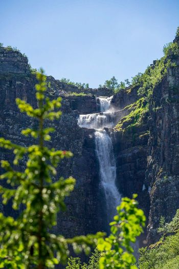 Njupeskär through the trees Mountains Hiking Outdoor Life Waterfalls Sweden Hiking Trail Waterfall Scandinavia Fulufjället National Park Njupeskär Plant Tree Water Nature Day Growth No People Beauty In Nature Outdoors Scenics - Nature Flowing Water