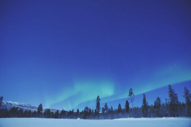 Scenic View Of Aurora Borelias Over Snow Covered Land Against Blue Sky At Night