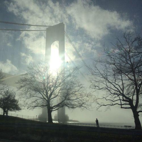Foggy day at the Verazzano Bridge Bare Tree Beauty In Nature Bridge Brooklyn Cloud - Sky Day EyeEmNewHere Fog Foggy Foggy Morning Nature New York New York City No People NYC Outdoors Silhouette Sky Sun Sunbeam Sunlight Tree Verazzano Bridge Verazzanobridge EyeEmNewHere