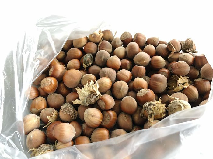 Hazelnut time Food Food And Drink Large Group Of Objects Nature Healthy Eating Freshness No People Wellbeing Abundance Nut Nut - Food Brown Fruit Heap Variation Container