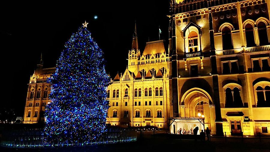 Christmas,nightdream,lights. Winter Wintertime Blue Lights  World Monuments Eclectic Monument First Eyeem Photo Christmas Decoration My Photography christmas tree Christmas Lights Night Lights Tourist Attraction  Tourist Spot Parliament Building Gothic Style