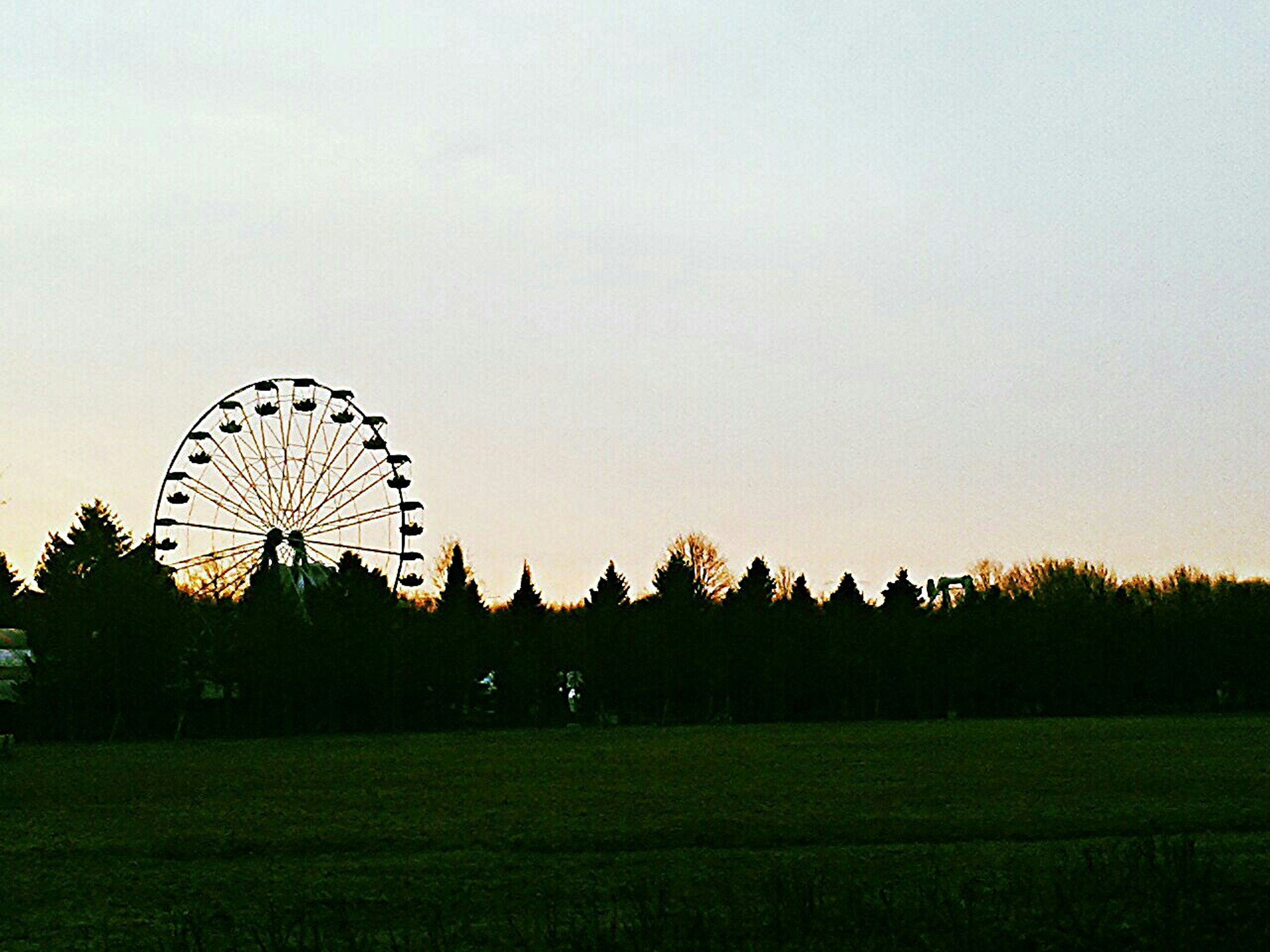 ferris wheel, clear sky, amusement park, field, amusement park ride, grass, arts culture and entertainment, tree, copy space, sky, landscape, sunset, architecture, built structure, outdoors, nature, circle, rural scene, growth, low angle view