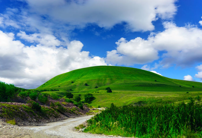Grenn hill Cloud - Sky Landscape Nature Scenics Mountain Beauty In Nature Green Color Outdoors Rural Scene Green Hillside Greenery Green Beauty Grass Sky Beauty In Nature Green Hill Greenary Travel Destinations Mountains And Sky Rural Landscape Rural Life Tranquility Green Color Nature
