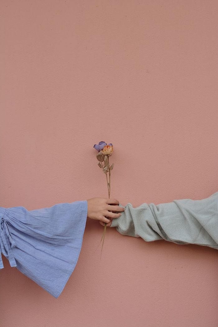Close-up of hand holding flowers against wall