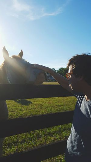 Me And My Friend Road Side Horses Beautiful EyeEm New Jersey Cool Kids