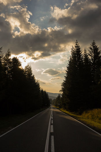 Empty road amidst trees during sunset