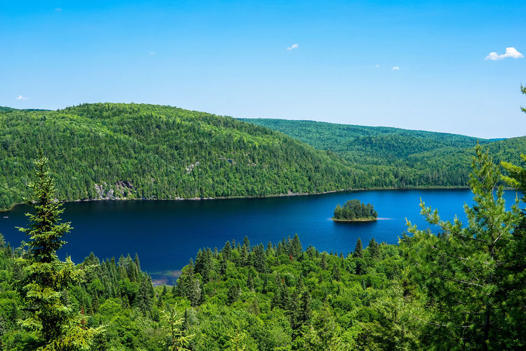 """L'île des pins - Postcard from Quebec... sous-titres en italien: """"L'isola dei pini (per gli amici giusepp-i)"""" 24-240mm Beauty In Nature Blue Blue Sky Calm Canada Coast To Coast Green Green Green Color Green Color Idyllic Island Lake Landscape Mountain Nature Nature Scenics Sky Sony A6000 Tranquil Scene Tranquility Tree Trees Water"""