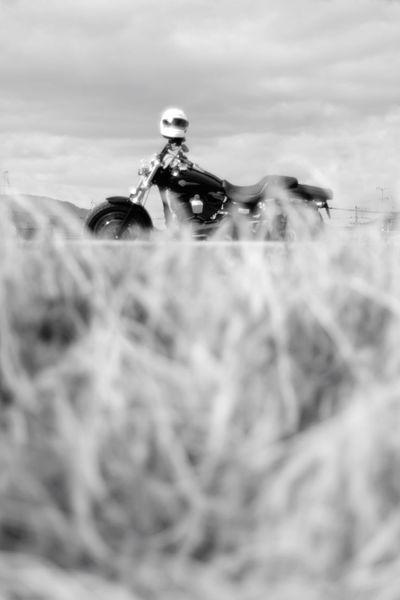 すれ違い Bw_collection Blackandwhite Fujifilm X-Pro1 Black And White Black & White Fujifilm Carl Zeiss Planar50/1.4 Road Motorcycle Harleydavidson