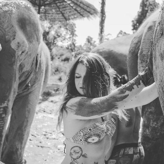 Young Woman Enjoying Mud Bath With Elephant