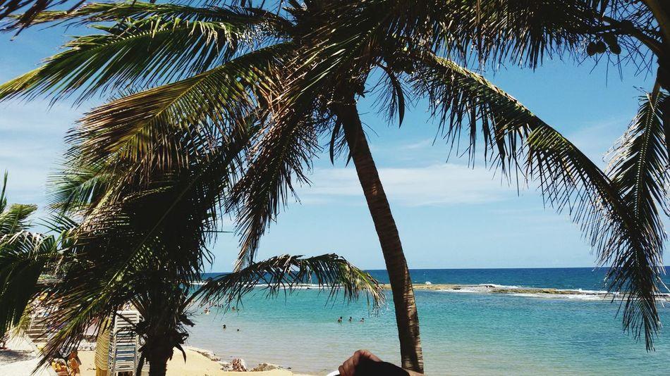 Praia de Jaua First Eyeem Photo