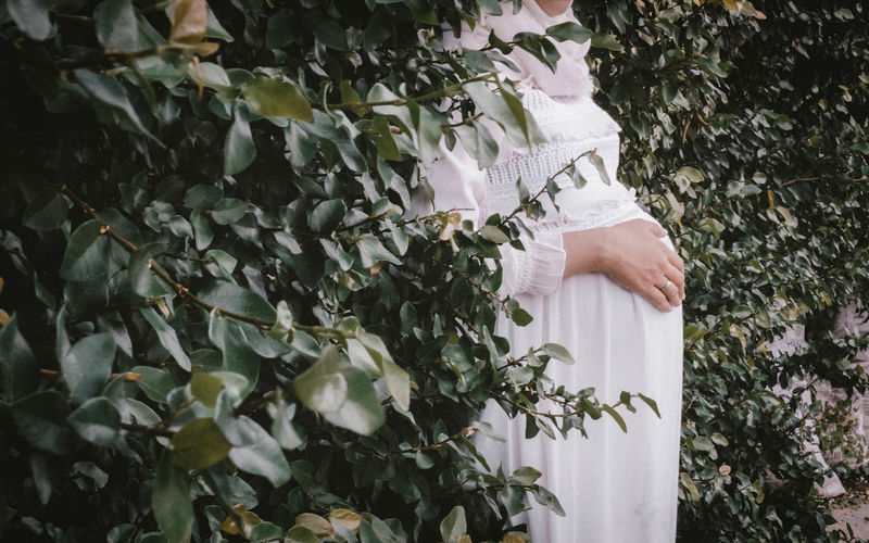 Midsection Of Pregnant Woman Standing By Plants