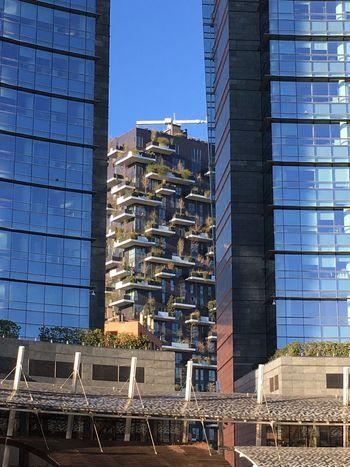 Milano Italy Architecture Bosco Verticale