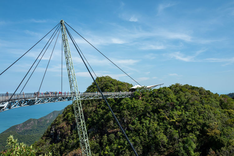 Langkawi Sky Connection Tree Plant Bridge - Man Made Structure Bridge Nature Architecture Built Structure Transportation Day Suspension Bridge Cloud - Sky Cable Engineering Mountain Green Color Scenics - Nature Growth Outdoors Bay Skybridge