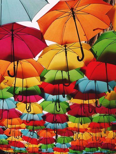 Umbrella colors