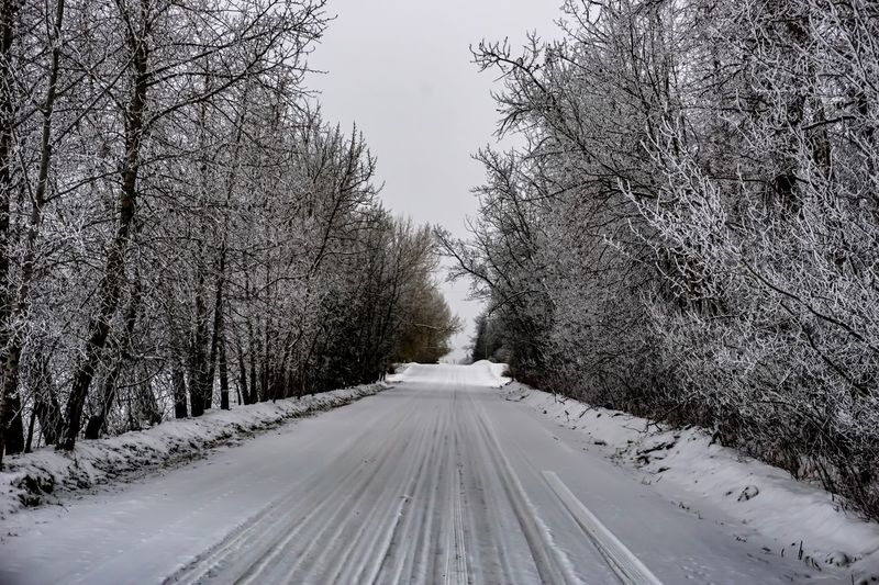 Snow Covered Road Amidst Bare Trees Against Sky