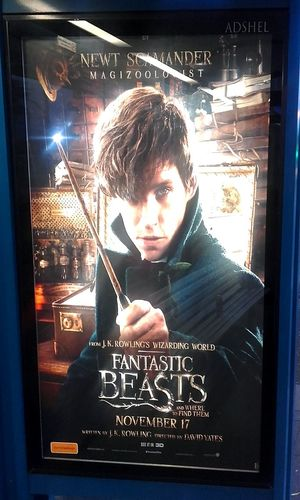 Magizoology WizardingworldofHarryPotter Wizardingworld Jkrowling J. K. Rowling NewtScamander Newt Scamander Fantastic Beasts Movie Poster Illuminated Signs Sign Signs_collection Signs Streetphoto_color Wizarding World Signporn 3D Movie Magizoologist Newt Signstalkers Postercollection Poster Movie Posters Jkrowling Posters Posterporn Signage Poster Collection Taking Photos Taking Pictures