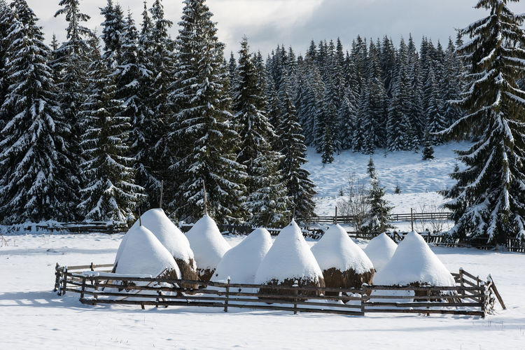 Scenic view of snow covered huts against sky